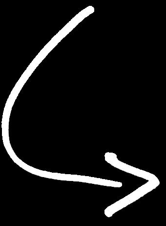 white-curved-arrow-transparent-11 – Dr. Katharina Johnson